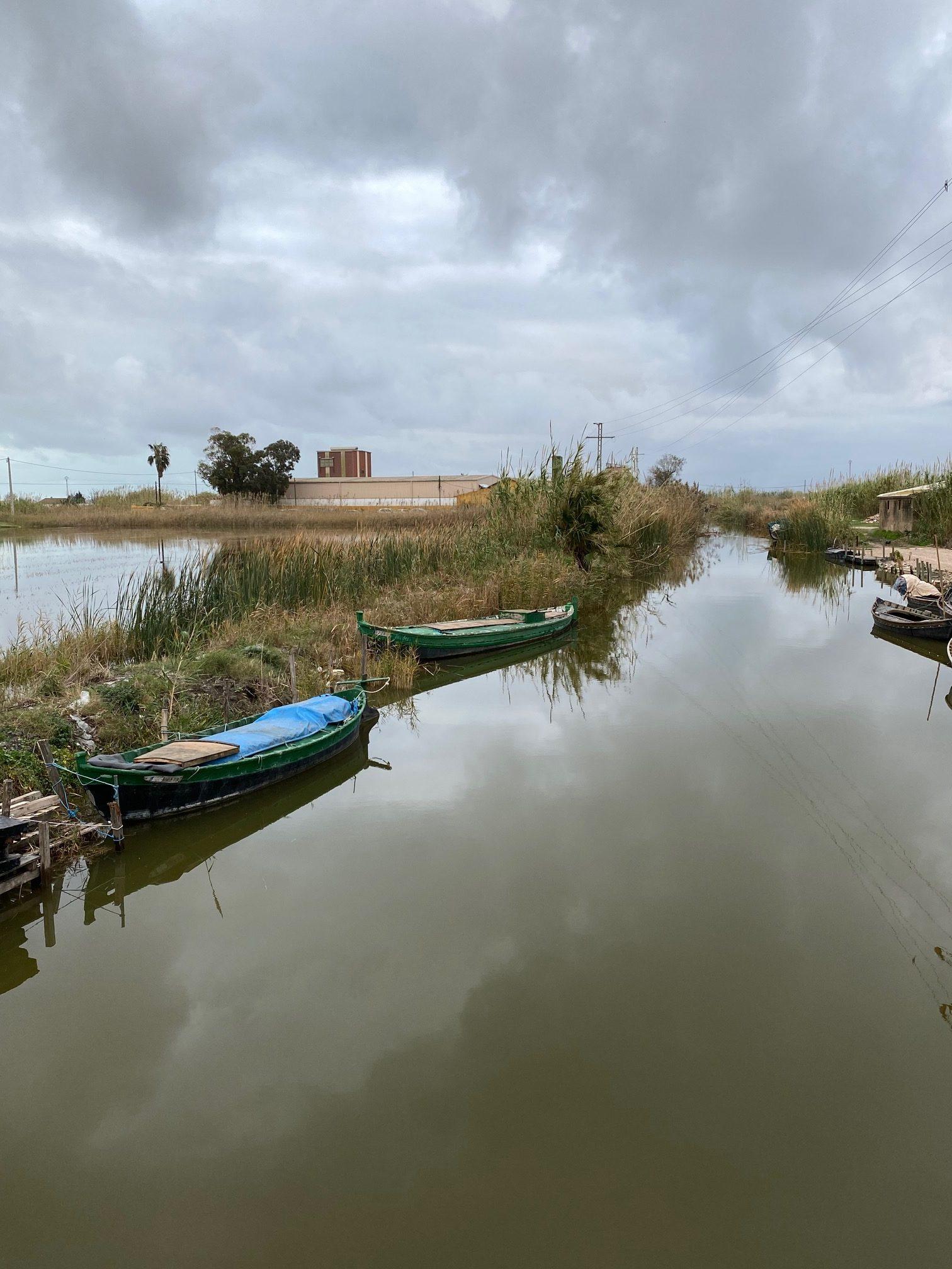 Canal de la Albufera en el El Palmar